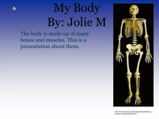 My Body By: Jolie M