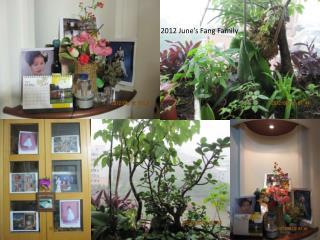2012 June�s Fang Family