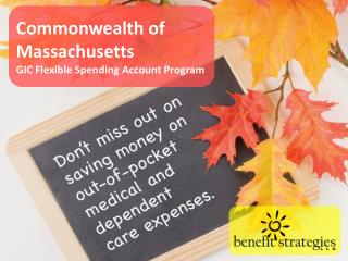 Commonwealth of Massachusetts GIC Flexible Spending Account Program