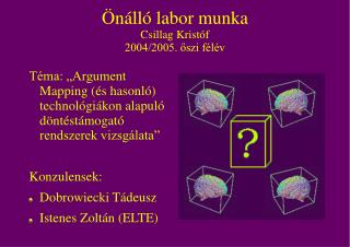 Önálló labor munka Csillag Kristóf 2004/2005. őszi félév