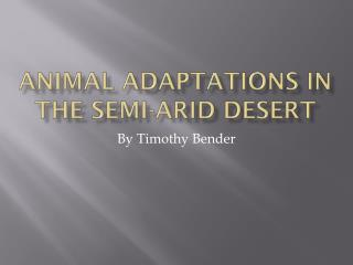 Animal Adaptations in the Semi-Arid Desert