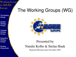 The Working Groups (WG)