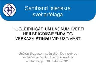 hugleiðingar um  lagaumhverfi Heilbrigðisnefnda og verkaskiptingu við  UST/MAST