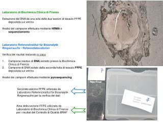 Laboratorio di Biochimica Clinica di Firenze