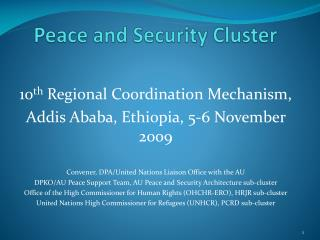 Peace and Security Cluster