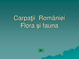 Carpa ţ ii  Rom â niei Flora  ş i fauna