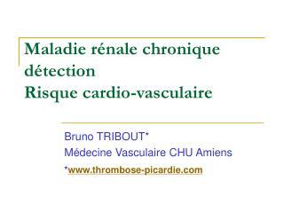 Maladie rénale chronique détection Risque cardio-vasculaire