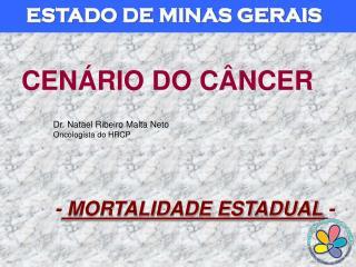 ESTADO DE MINAS GERAIS