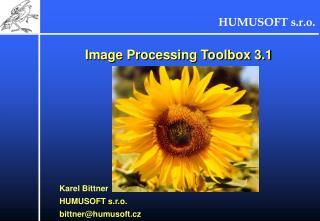 Image Processing Toolbox 3.1