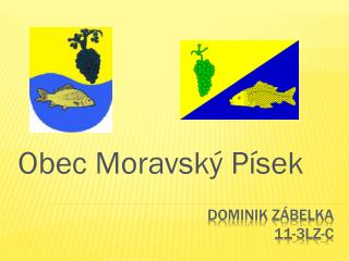 Dominik Zábelka 11-3lz-c