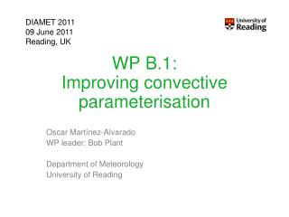WP B.1: Improving convective parameterisation