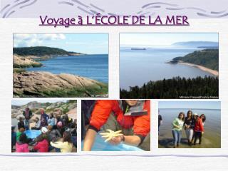 Voyage à L'ÉCOLE DE LA MER