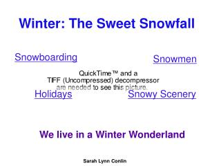 Winter: The Sweet Snowfall