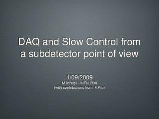DAQ and Slow Control from a subdetector point of view