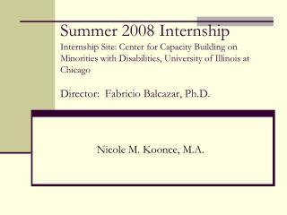 Summer 2008 Internship Internship Site: Center for Capacity Building on Minorities with Disabilities, University of Illi