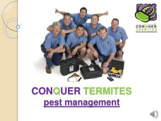 CON Q UER TERMITES pest management