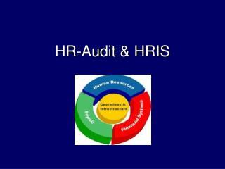HR-Audit & HRIS
