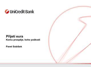 Přijetí eura  Komu prospěje, koho poškodí Pavel Sobíšek