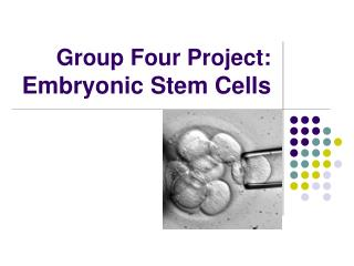 Group Four Project:  Embryonic Stem Cells