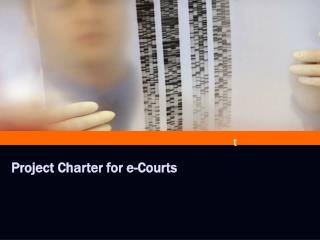 Project Charter for e-Courts