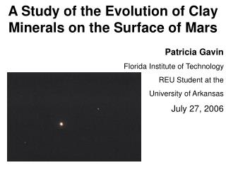 A Study of the Evolution of Clay Minerals on the Surface of Mars