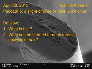 April 30, 2013Positive Attitude Peccadillo: a slight offense or fault; a minor sin Do Now: