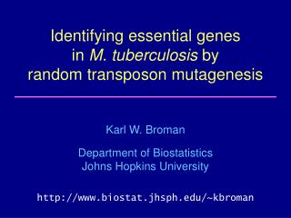 Identifying essential genes in M. tuberculosis by random transposon mutagenesis