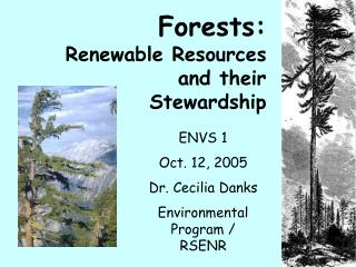 Forests:    Renewable Resources and their Stewardship