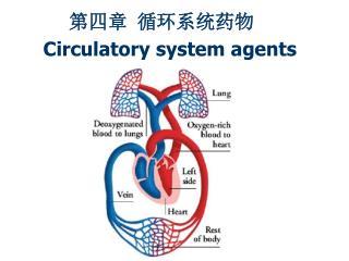 第四章 循环系统药物 Circulatory system agents