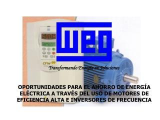 OPORTUNIDADES PARA EL AHORRO DE ENERGÍA ELÉCTRICA A TRAVÉS DEL USO DE MOTORES DE