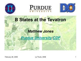 B States at the Tevatron