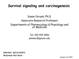 Susan Ceryak, Ph.D. Associate Research Professor