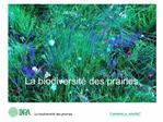 La biodiversit  des prairies