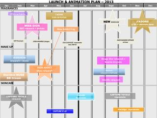 LAUNCH & ANIMATION PLAN – 2013