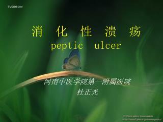 消  化  性  溃  疡 peptic  ulcer