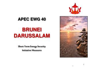 APEC EWG 40 BRUNEI DARUSSALAM Short-Term Energy Security Initiative Measures