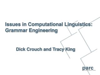 Issues in Computational Linguistics: Grammar Engineering