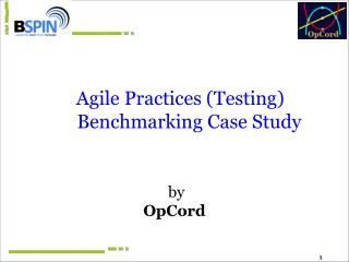 Agile Practices (Testing) Benchmarking Case Study