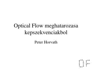 Optical Flow meghatarozasa kepszekvenciakbol