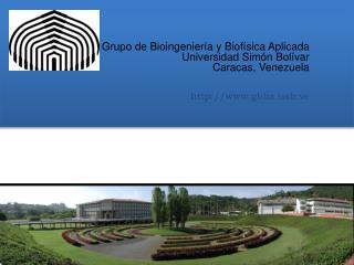 Grupo  de  Bioingeniería  y  Biofísica Aplicada Universidad  Simón  Bolívar Caracas, Venezuela