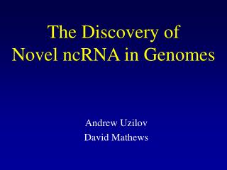 The Discovery of  Novel ncRNA in Genomes