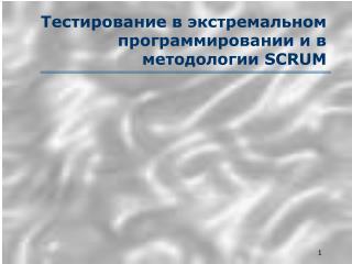 Тестирование в экстремальном программировании и в  методологии  SCRUM