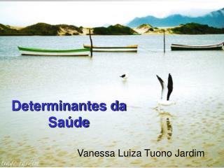 Determinantes da Sa�de
