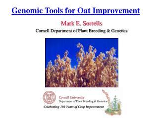 Genomic Tools for Oat Improvement