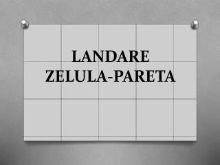 LANDARE  ZELULA-PARETA