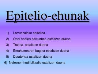 Epitelio-ehunak