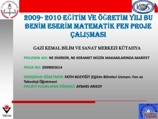 2009- 2010 EĞİTİM VE ÖĞRETİM YILI BU BENİM ESERİM MATEMATİK FEN PROJE ÇALIŞMASI