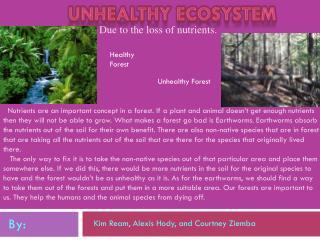 Unhealthy Ecosystem