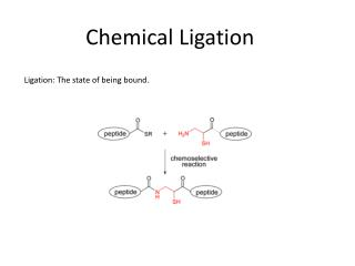 Chemical Ligation