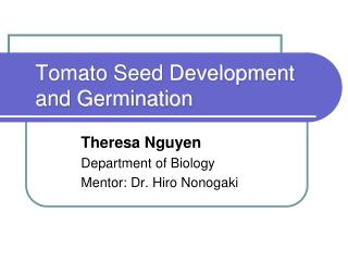 Tomato Seed Development and Germination